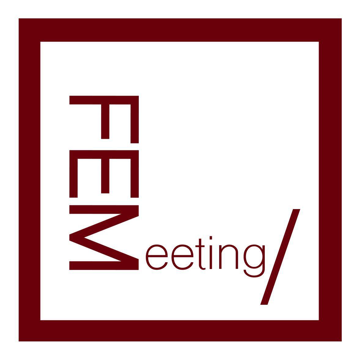 FEMeeting